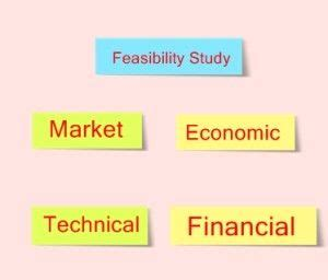 History thesis feasibility study